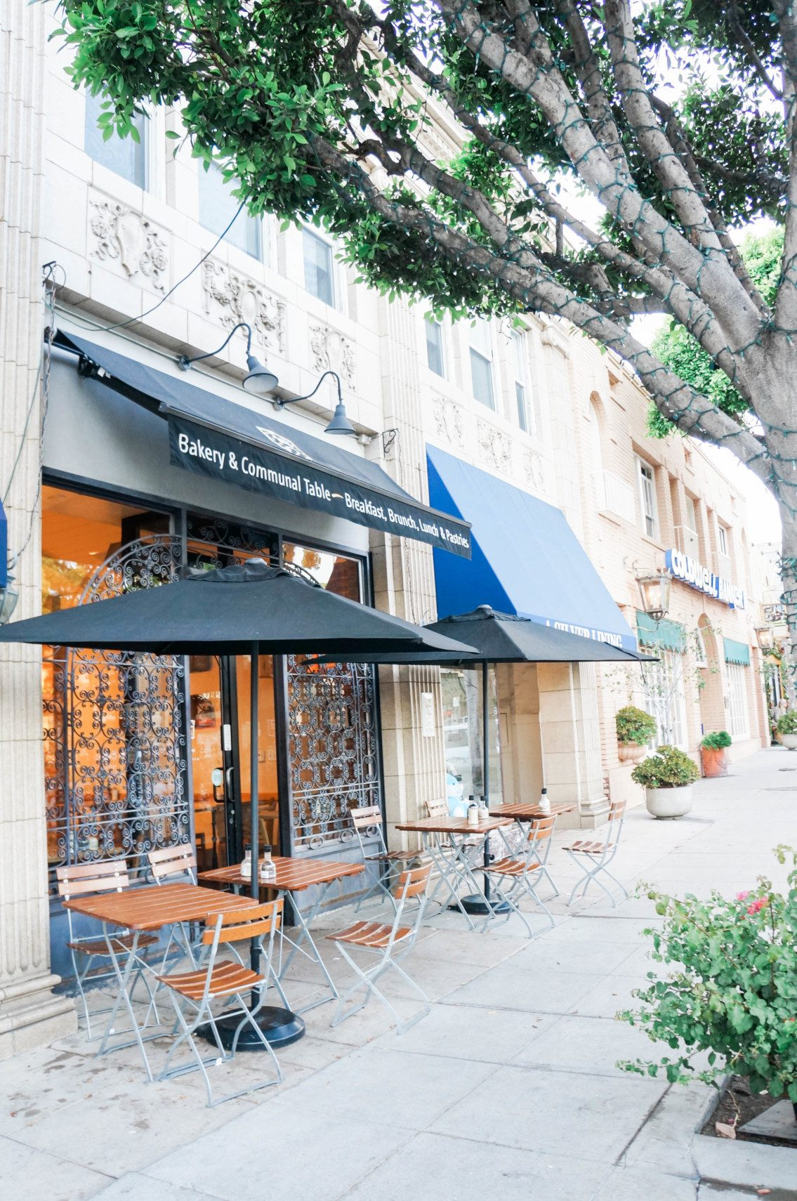 Where to eat, play, and shop in Larchmont Village, a quaint tree-lined street near the Hancock Park neighborhood of Los Angeles.